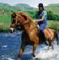 Dullstroom Horse Riding